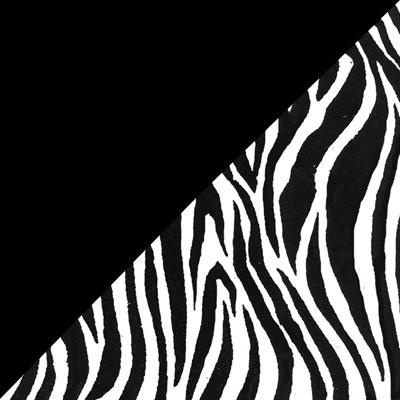 Zebra and Black