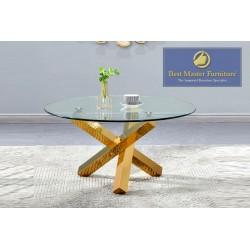 T19 Modern Coffee Table