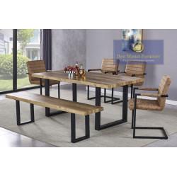 BA224 Modern Dining Set